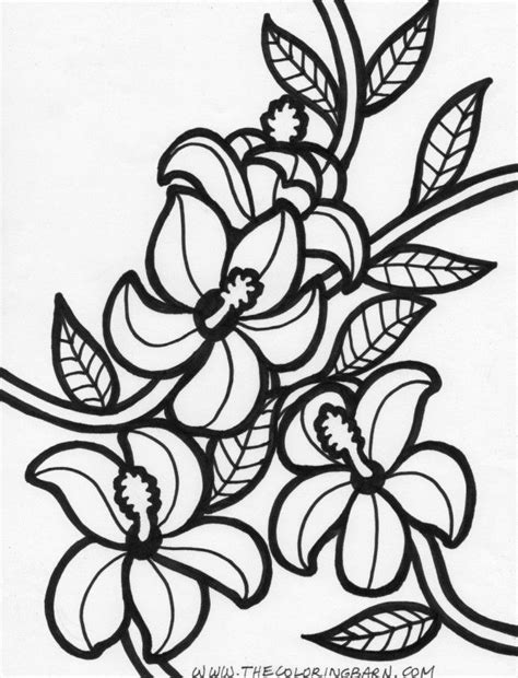 printable pictures of hawaiian flowers printable hawaiian coloring pages coloring home