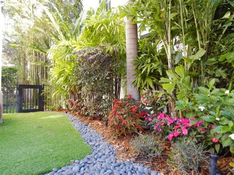 tropical landscape design photograph tropical landscape de