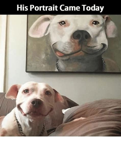 Portrait Meme - his portrait came today meme on sizzle