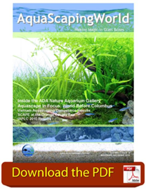 aquascaping world magazine november december 2010
