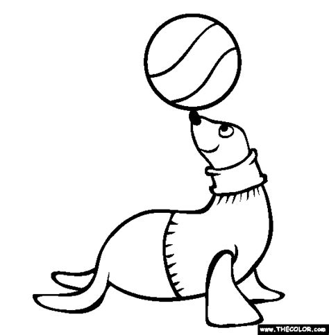 Seal Coloring Page  Free Online sketch template