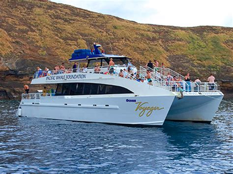 boat sales oahu pacific whale foundation molokini turtle arches