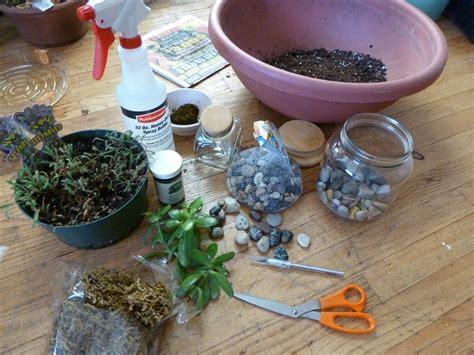 how to make a terrarium simple glass terrarium roots nursery