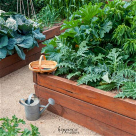 benefits of raised garden beds the benefits of raised bed gardening happiness matters