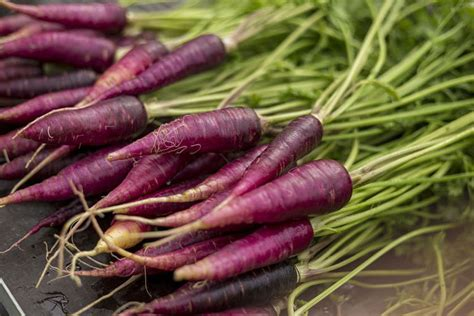 the carrot purple and other curious stories of the food we eat rowman littlefield studies in food and gastronomy books purple carrot benefits for inflammation health and