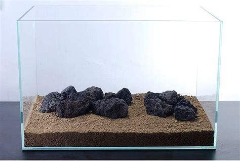 Pupuk Dasar Aquascape Terbaik 7 cara membuat aquascape yang murah dan sederhana cara