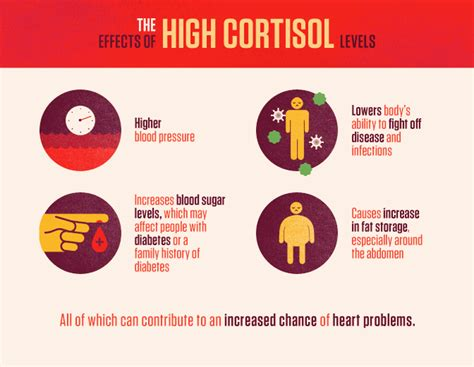 high cortisol levels the science of stress fix com