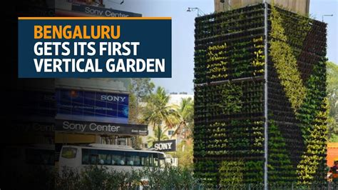 bengaluru gets its vertical garden to curb pollution
