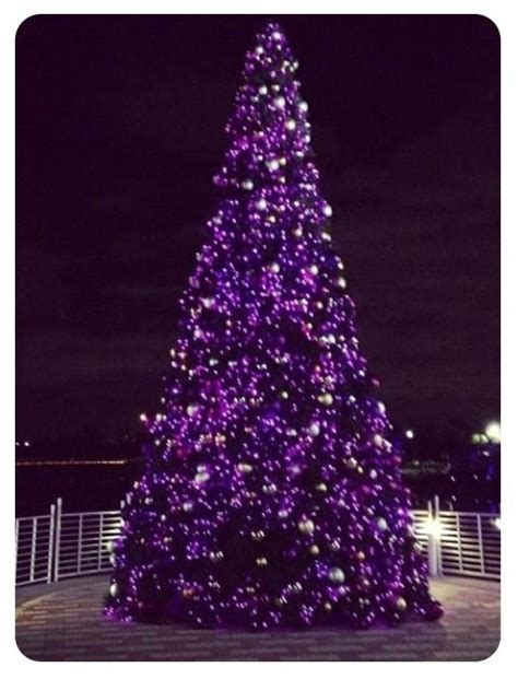 1000 images about a purple christmas on pinterest