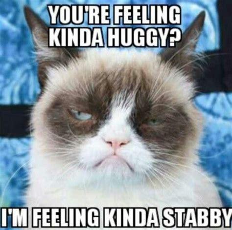Grumpy Memes - grumpy cat meme grumpycat characters i love pinterest