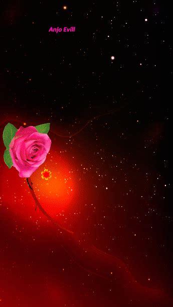imagenes de flores gif con movimiento fondos de pantalla con flores en movimiento im 225 genes gif