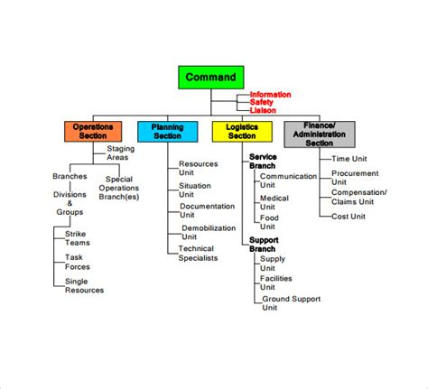 template org chart sle ics organizational chart 8 documents in pdf