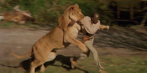 biography of roar movie roar filmed with 100 untamed lions business insider