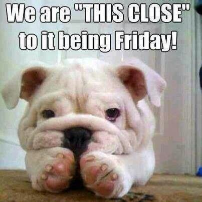 Thursday Meme - we are so close to friday happy thursday everyone chs
