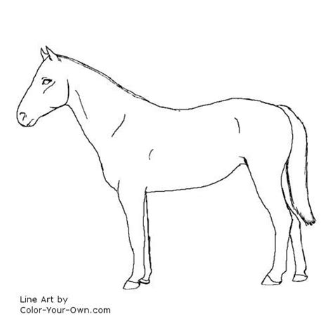 race horse coloring pages race horse outline coloring coloring pages