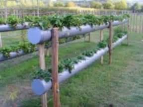 strawberry planter 2 level guttering gardening pinterest