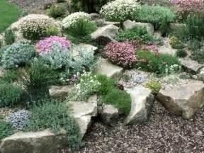 Rock Garden Plants For Shade Skalniaki W Ogrodzie