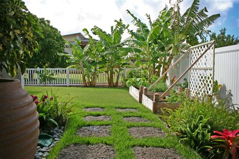 hawaiian backyard landscaping hawaii newsonair org