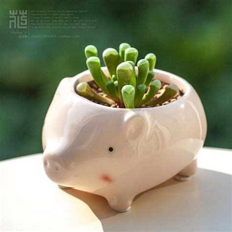cute succulent pots kawaii little animals ceramic flowerpot pink pig planter