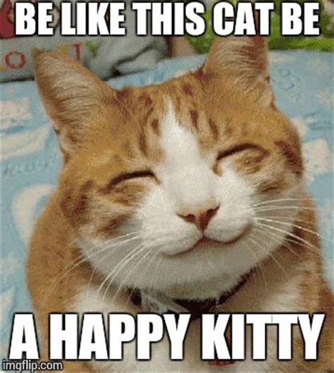 Be Happy Meme - happy cat smiling imgflip