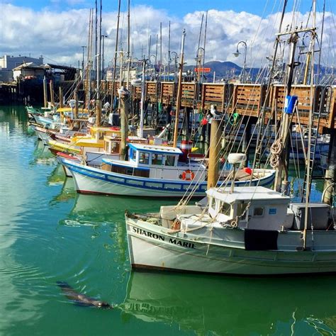 monterey boats instagram 48 best monterey fishing boats images on pinterest