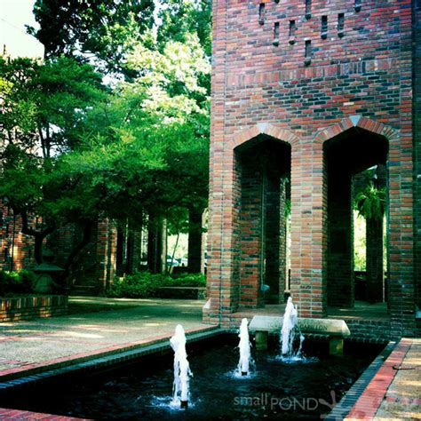 m s university mississippi state university small pond graphics