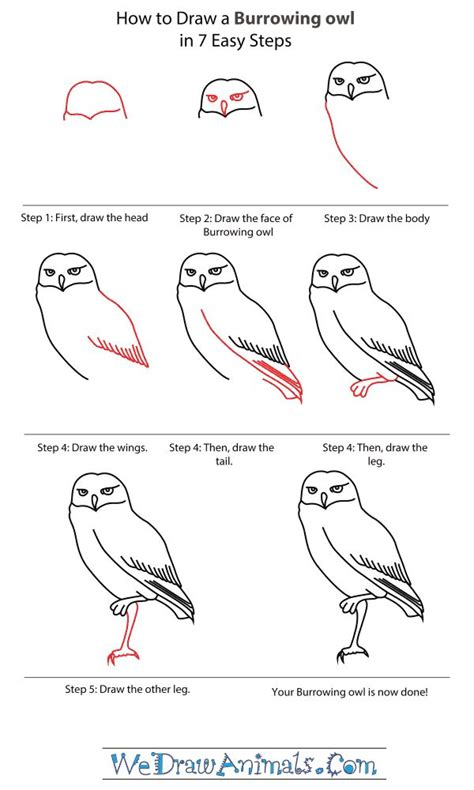 how to draw doodle step by step 38 best images about how to draw an owl on how