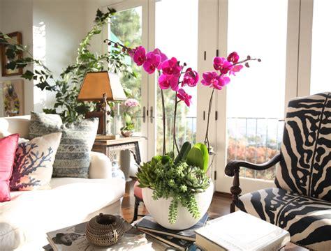 fiori per casa arredare casa con fiori e piante