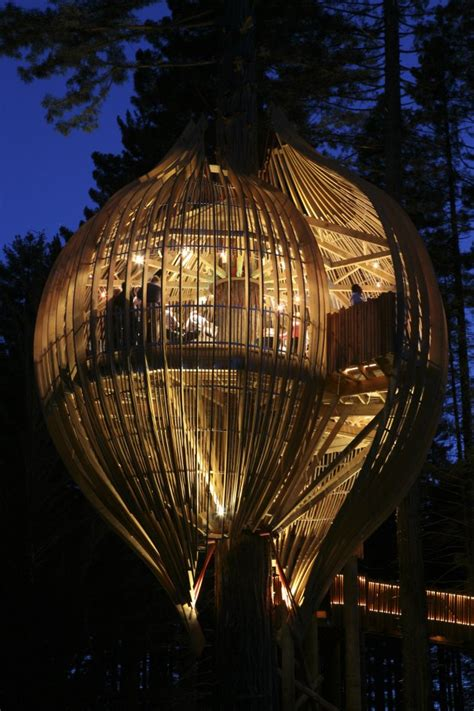 coolest tree houses cool treehouses from around the world cool things