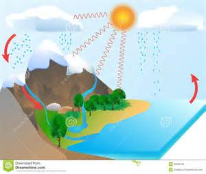 water cycle royalty free stock photos image 20603758
