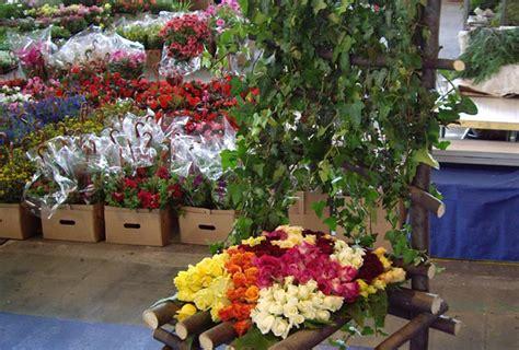 fiori torino mercato dei fiori di torino
