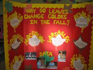 what causes the leaves to change color in the fall why do leaves change color in the fall