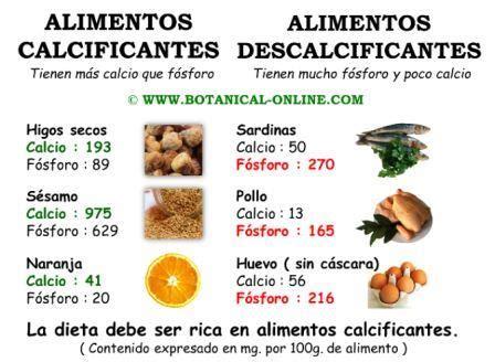 alimentos fosforo descalcificaci 243 n de los huesos