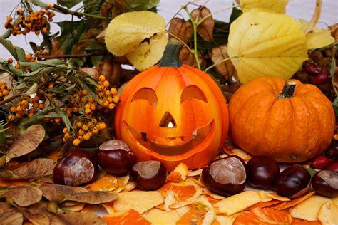 Kostenlose Bilder Herbst by Herbst 1 Lizenzfreie Fotos Bilder Kostenlos