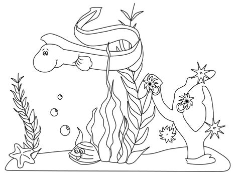 ocean coloring pages preschool free printable ocean coloring pages for kids