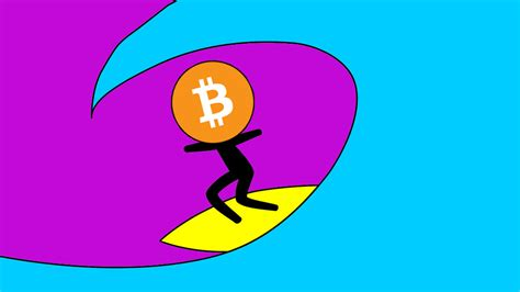 the sceptic s guide to bitcoin cryptocurrencies and the blockchain everything you re afraid to but wanted to ask anyways books the surfer s guide to cryptocurrencies and bitcoin the