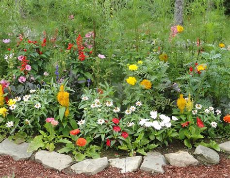 Small Flower Garden Ideas Small Garden Ideas Modern Magazin