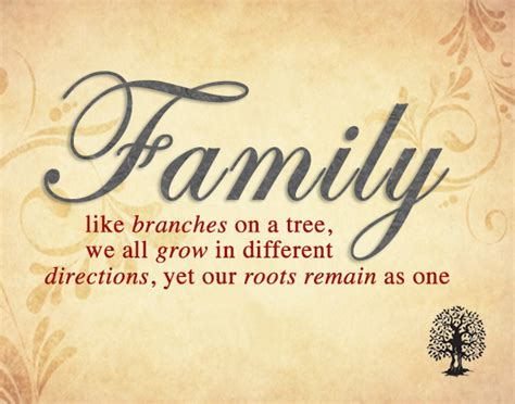 family quotes 25 family quotes and sayings