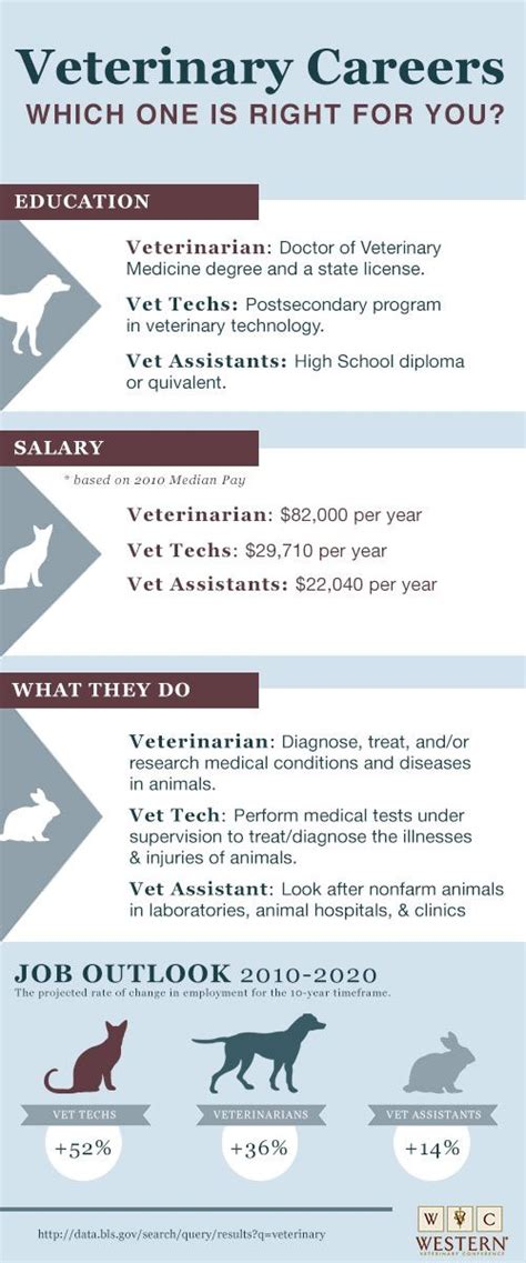 25 best ideas about veterinary medicine on veterinary technician schools