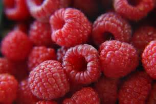 file fresh raspberries 272567650 jpg wikimedia commons