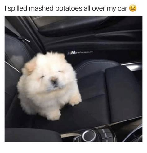 Mashed Potatoes Meme - search spilled coffee memes on me me