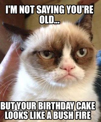 30 Year Old Birthday Meme - you re old birthday cakes meme maker i m not saying you re old but your birthday cake
