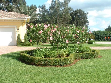 florida backyard landscaping ideas florida landscaping ideas for backyard ztil news
