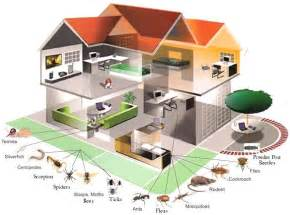House Pest Control by Pricing