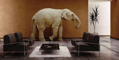 elephant room planet ubuntu