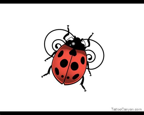 small ladybug tattoo designs ladybug drawing clipart panda free clipart images
