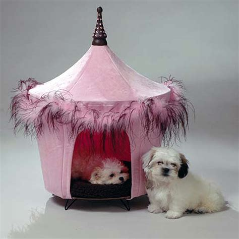 fancy dog beds designer doggehs more crazy dog beds hi i m sadie shih tzu