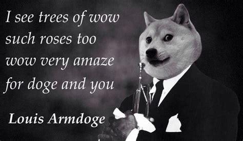 Doge Wow Meme - doge casandersdotnet