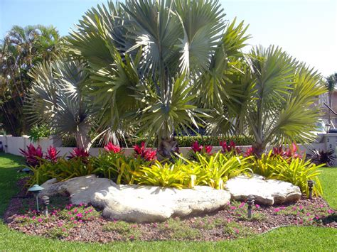 South Florida Landscaping Google Search Garden Florida Backyard Landscaping Ideas