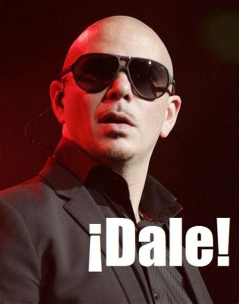 the gallery for gt funny pitbull memes